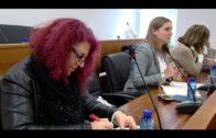 El Grupo Transfronterizo traslada a los alcaldes sus reflexiones para la reunión con Dastis
