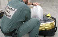 La Guardia Civil interviene 65 kgrs. de angulas y anguilas vivas en el interior de cuatro maletas