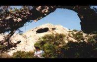 Aprobada la moción para que el arte sureño sea Patrimonio de la Humanidad