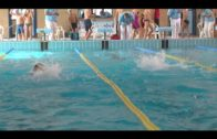 Brillante actuación de la natación algecireña en el Ciudad de Cádiz