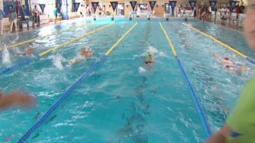 Un total de once nadadores de C.D. Natación Ciudad de Algeciras participarán en el andaluz de invierno