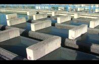 La Junta destaca sus inversiones garantizan el abastecimiento ininterrumpido de agua en Algeciras
