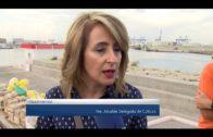 El UCADIZ desarrolla el Máster de Arqueología Naútica y Subacuática en la Bahía de Algeciras