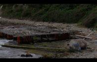El grupo municipal socialista reclama la retirada de restos del temporal en la playa de  Getares