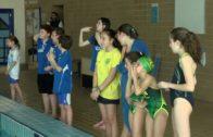 Buenos resultados de los Benjamines del CD. Natacion Ciudad de Algeciras en los Jóvenes Nadadores