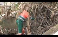 El Ayuntamiento limpia y desbroza una parcela en la barriada Huerta de las Pilas