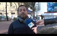 El Ayuntamiento fumiga espacios públicos para combatir la plaga de orugas