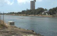 Comienzan las obras de la barrera de seguridad en la desembocadura del Guadarranque