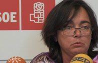 El Psoe exíge al alcalde que «investigue» la situación del avalista del Servicio de Ayuda a Domicilio