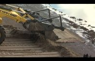 EQUO reprocha la falta de agilidad en el tratamiento del vertido de crudo