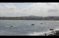 La Aemet anuncia la alerta amarilla en el Estrecho por fuerte viento y fenómenos costeros