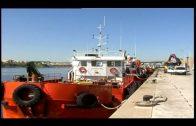 BOE publica el anuncio de licitación del Port Management System en el puerto de Algeciras