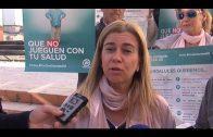 Los parlamentarios andaluces del PP presentan en Algeciras la campaña '#PorUnaSanidad10'