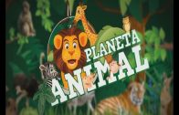PLANETA ANIMAL