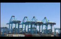 APM Terminals Algeciras celebra mañana jueves el Global Safety Day