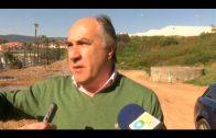 El alcalde agradece a Carreteras la limpieza del palmeral en los márgenes de la autovía