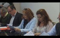 El Ayuntamiento estudia presentar un recurso de casación ante la sentencia sobre la Escalinata