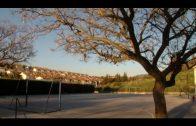 El BOJA publica la contratación del proyecto de construcción de aulas y aseos en el CEIP Caetaria