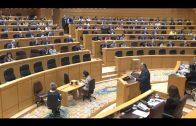 El PP en el Senado presentó una enmienda para apoyar la moción del PSOE de la Algeciras-Bobadilla