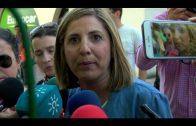 Unas 4.000 personas se manifiestan reivindicando la línea con Bobadilla, 'El tren de la comarca'