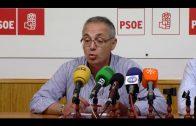 Lozano denuncia el deterioro de servicios como limpieza o playas