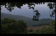 Agaden celebra la ampliación del parque natural de los Alcornocales en Algeciras