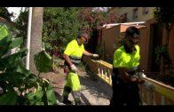 El Ayuntamiento lleva a cabo los trabajos de limpieza y desbroce en varias zonas de la ciudad