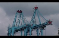 El Puerto multiplicaría por 15 sus trenes de mercancías si contara con conexión ferroviaria adecuada