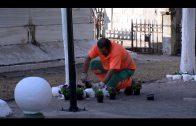 Los camposantos de Algeciras preparados para la conmemoración de Fieles Difuntos