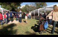 El Colegio Montecalpe celebra su primer mercadillo solidario
