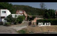 Desarticulada una organización de narcotraficantes en Algeciras
