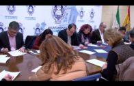 El Tribunal Superior de Justicia da la razón al Ayuntamiento en las obras del Centro Documental