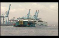 Los buques de Baleària facilitarán el control de la población de cetáceos en el Estrecho