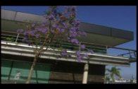 La Cámara de Comercio del Campo de Gibraltar convoca ayudas a PYMES