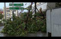 El temporal Emma sigue haciendo acto de presencia en la ciudad