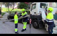 Alumbrado redistribuye e incorpora farolas en la avenida Italia de San José Artesano