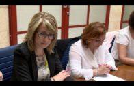 La Comisión de Fomento aborda colaboraciones con Diputación y Vopak en materia de formación y empleo