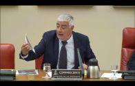 Mena comparece en el Congreso para abordar los riesgos de policías y guardias civiles en la comarca