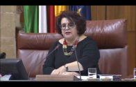 La Junta asegura que el área sanitaria del Campo de Gibraltar es una prioridad para el Gobierno