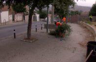 Algesa continua con los trabajos de limpieza y desbroce en la Cañada de los Tomates y en Cortijo Vides