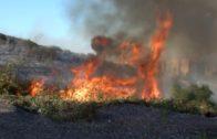Efectivos de Bomberos e Infoca extinguen cinco incendios en Algeciras