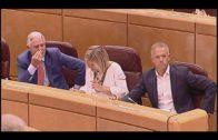El PP pide a Sánchez que comparezca en el Senado e informe sobre la crisis migratoria