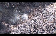 El Consorcio Provincial de Bomberos extingue un incendio de pastos en Nuevo San García