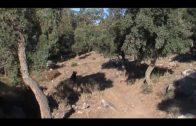 Mijas y Bormujos próximas citas para el Andalucía Nature