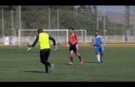 Apadis campeón de Andalucía de Fútbol 7 en segunda división