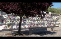 El Ayuntamiento adecenta los cementerios ante el incremento de visitas en estos días