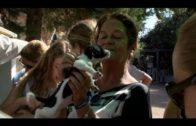 Jornadas de puertas abiertas de la Sociedad Protectora de Animales del Campo de Gibraltar