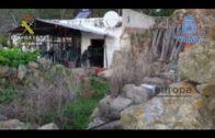 Desarticulada una organización dedicada al tráfico de hachís a través de Tarifa con 28 detenidos