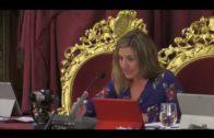 Pintor se despide como diputada provincial, tras su elección como diputada autonómica