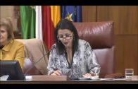 La diputada de Ciudadanos María del Carmen Martínez acerca el Parlamento a los jóvenes